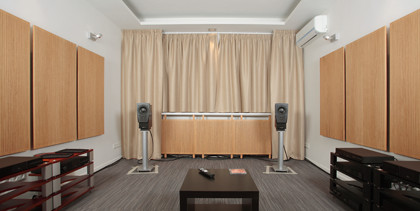акустические системы Dynaudio Confidence C1 Platinum