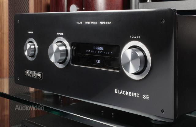 Интегральный усилитель SA Lab Blackbird SE